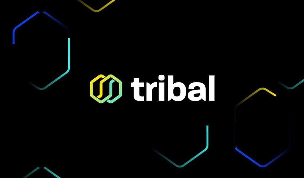 Egyptian-founded FinTech Startup Tribal Credit Secures $5.5m in Seed Funding